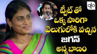 YS Sharmila Latest Tweet On YS Jagan Trending..