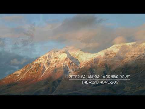 Peter Calandra - Morning Dove-Peter Calandra