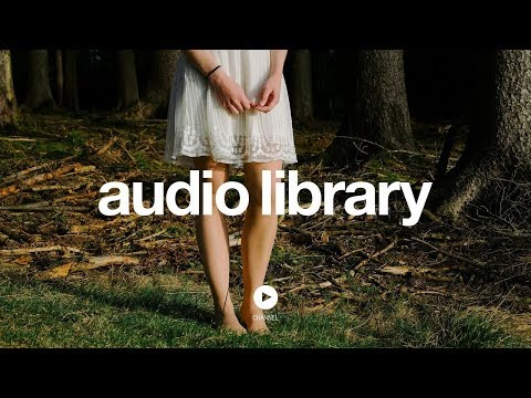 The Woods - Silent Partner (No Copyright Music)