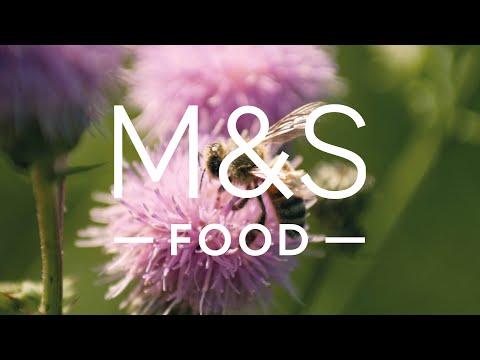 marksandspencer.com & Marks and Spencer Voucher Code video: Select Farms British Honey   Episode 2   Fresh Market Update   M&S FOOD