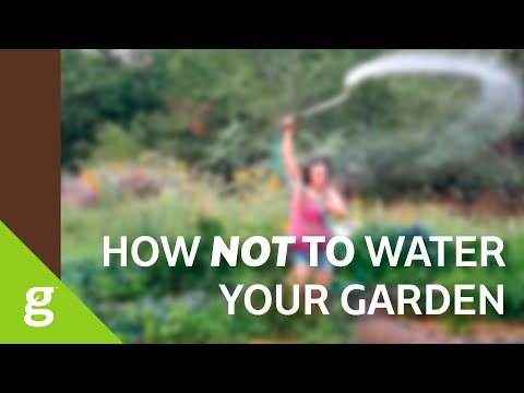 How NOT to Water Your Garden