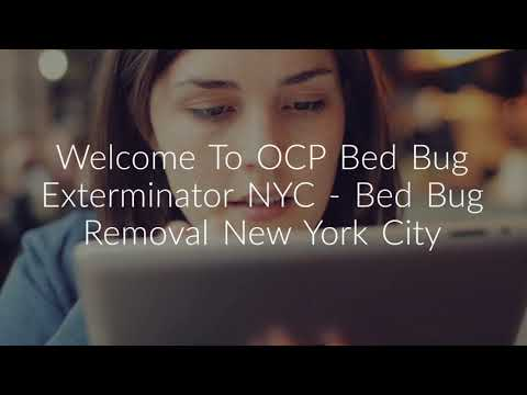 Certified OCP Bed Bug Exterminator in NYC