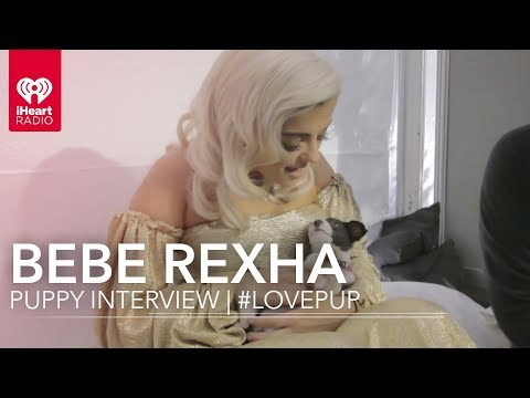 Bebe Rexha Puppy Interview | #LovePup with Johnjay