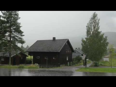 Thunderstorm Sounds for Sleep & Relaxation | Thunder & Rain Ambience | HD Nature Video
