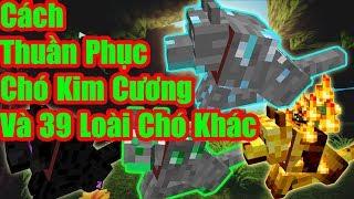 Cách Thuần Phục Chó Kim Cương -Ender- Blaze Và 36 Loài Chó Khác Trong Minecraft