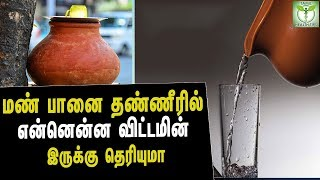 Health Benefits Of Using Clay Water Pot - Tamil Health & Beauty Tips