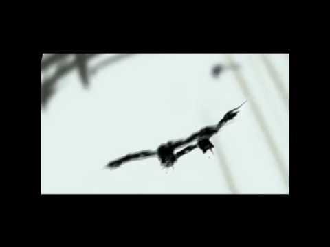 Kagamine Len - raven(ing-maned-dogs) - Original [HD]
