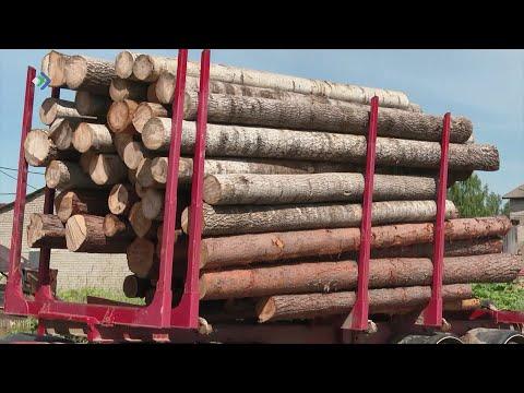Лесозаготовители Сысольского района всерьез обеспокоены за свой бизнес