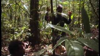 First Contact: Ambushed by angry tribesmen - Explore - BBC