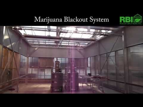 Marijuana Blackout System