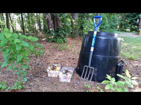 Cover photo for Homegrown | Getting Started with Backyard Composting