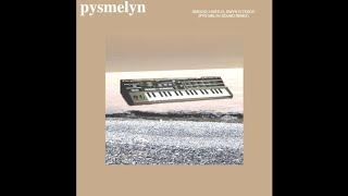 3 Hwr Doeth - Smocio, Hustlo, Dwyn o Tesco (Remix Pys Melyn)