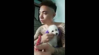 Thanh niên xăm trổ khóc vì phải bán chú chó poodle của mình
