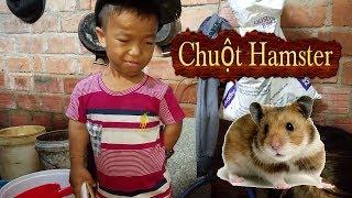 Anh Lùn Cùng Món Quà Đặt Biệt : Siêu cute Siêu Dể Thương Chuột Hamster