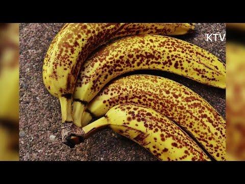 잘 익은 바나나를 하루 두 개씩 한 달간 먹으면 나타나는 효과