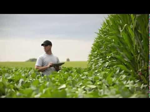 Новое приложение для аграриев от DuPont Pioneer