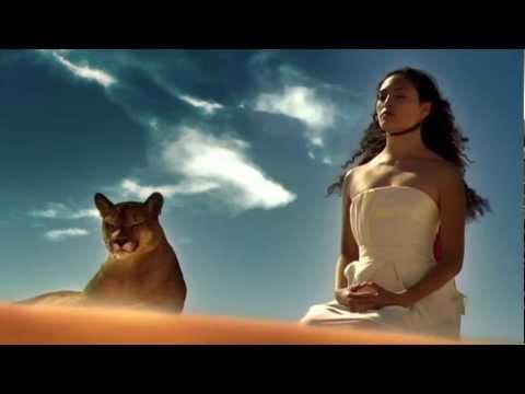 Vasilis Saleas - Love Dreams & Feelings