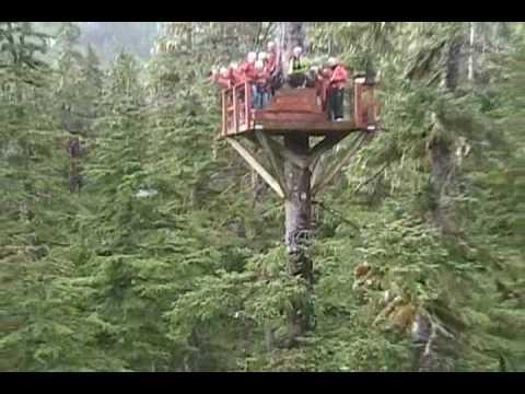 Alaska Zipline Adventures - AlaskaZip.com