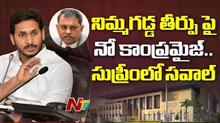 AP govt to challenge HC verdict on Nimmagadda Ramesh in Su..