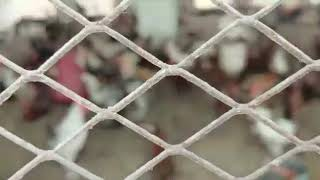 Part 1 Golden Misri Desi Murghi Farming In Pakistan - Syed Talha