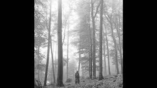 T A Y L O R S W I F T - Folklore Full Album