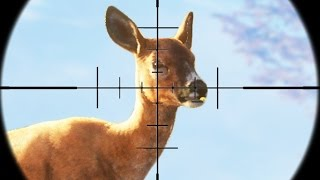 INSANE DEER HUNTING! (The Hunter Call Of The Wild)