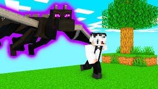 Am Vrut Sa Bat Dragonul Pe Minecraft Si S-a Intamplat Asta..