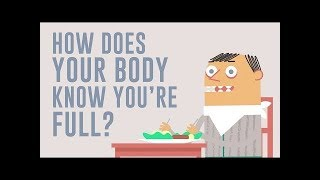 How does your body know you're full ?....  Hilary Coller..TEDscience