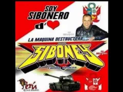 DANZA CON LOBOS SONIDO SIBONEY