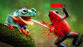 The Frog Tier List