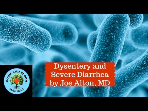Dysentery and Diarrhea Prevention and Treatment