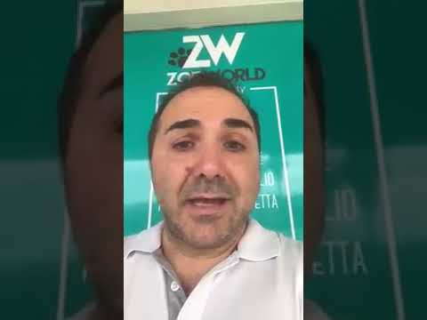 Video dlxZN2IzBJk