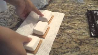 How To Make S'mores W/ Microwave