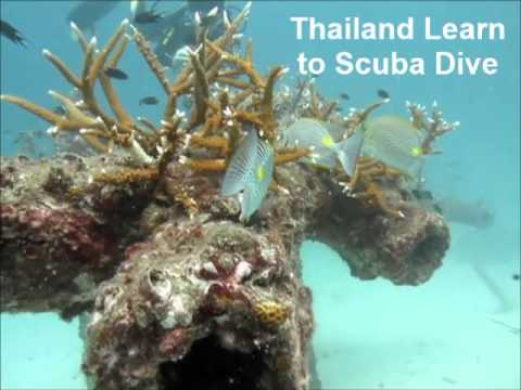 Thailand Learn to Scuba Dive