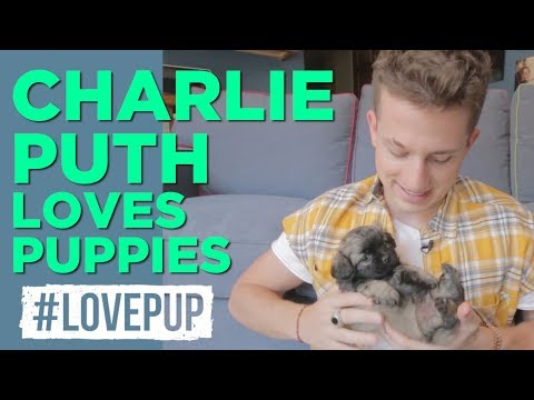 Charlie Puth Plays Keyboard w/ Puppies, Opens up About Being Attacked by a Dog and MORE!