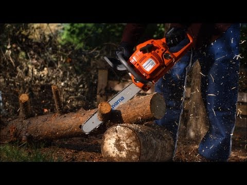 Lowe's took a powerful high-speed camera (called the Phantom Flex) and filmed everyday yard work in slow motion. At 2,500 frames per second, the action virtually freezes in time, allowing a glimpse of how spectacular everyday tools can be. A chainsaw rips through wood and spits out sawdust, sending shavings flying. A trimmer chews up grass, captured in close-up macro focus. Fallen leaves colorfully lilt in the air when a leaf blower cleans them off a lawn. Take a closer look and get inspired.