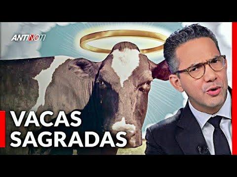 Luis Abinader: No Hay Vacas Sagradas [Caiga Quien Caiga] | Antinoti