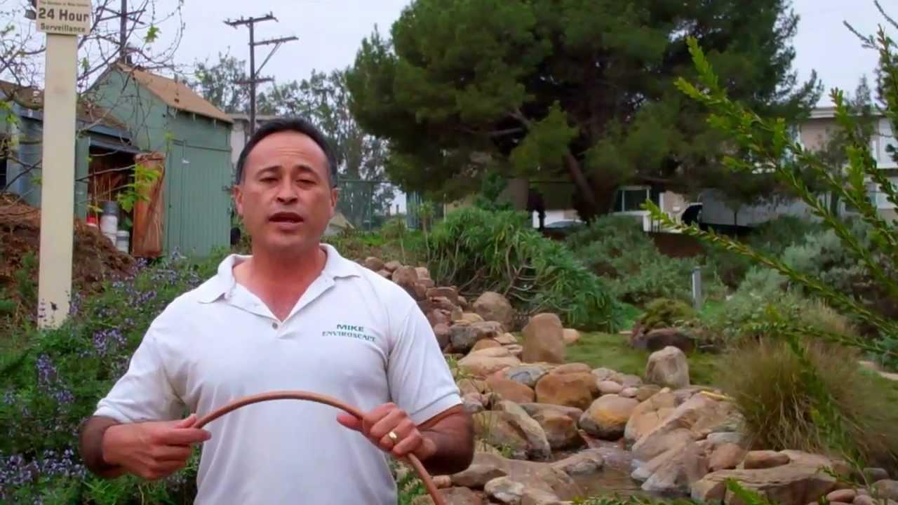 Rain bird drip manhattan beach botanical garden youtube - Manhattan beach botanical garden ...
