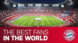 """""""Our fans were simply louder!"""" 