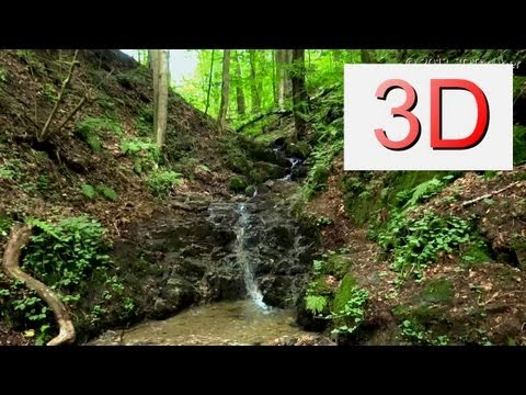 3D Nature: One Hour Waterfall Relaxation #4 and Bird Songs