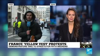French 'Yellow Vests' protesters are back but mobilisation weakens
