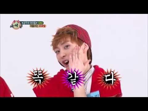 주간아이돌 - (Weekly Idol EP.103)  EXO Xiumin looks like Wonder Girls Sohee
