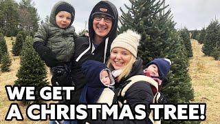 Carlin Family Christmas Tree!