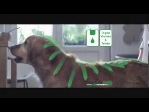 Frontline Combo TV Commercial