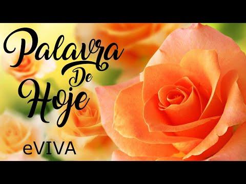 PALAVRA DE HOJE 20 DE JUNHO 2020 eVIVA MENSAGEM MOTIVACIONAL PARA REFLEXÃO MATEUS 11 SALMO BOM DIA!