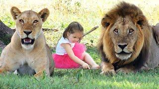AMAZING Animals That Saved Human Lives!