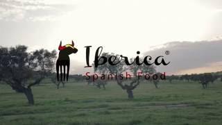 Iberica Spanish Food - Free-Range Fully Acorn-Fed Black Iberian Ham