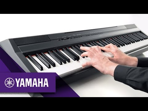 yamaha p45 v p115 comparison what piano should i buy