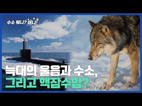 [수소 뭐니? 머니!]잠수함의 늑대소리, 수소가 잡는다!