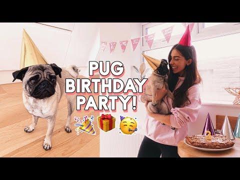 PUG PARTY! BEANS' BIRTHDAY | Baking a Dog Birthday Cake & Buying Everything My Dog Touches